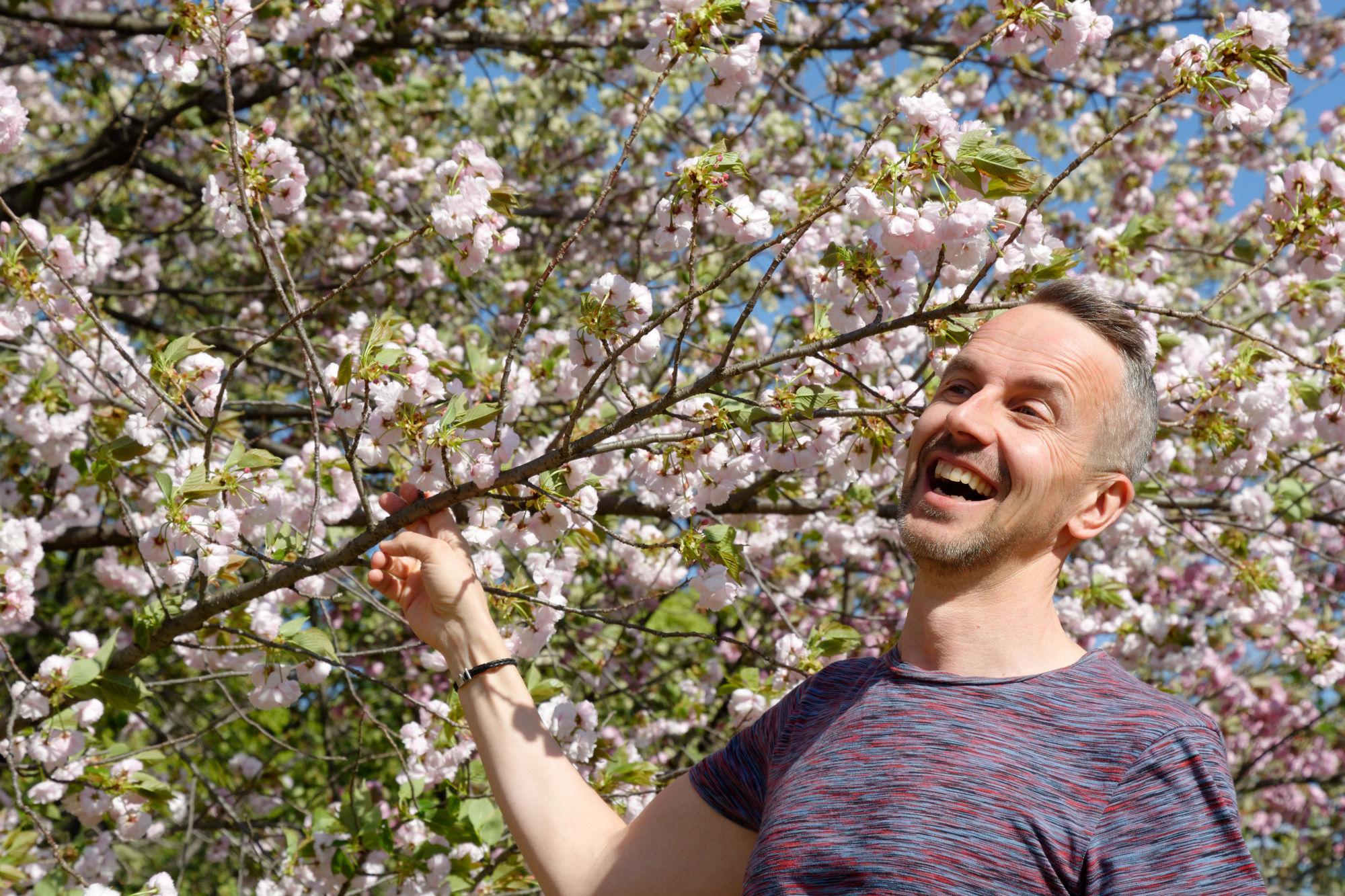 2017-04-19 15-16-34 Cherry Blossom