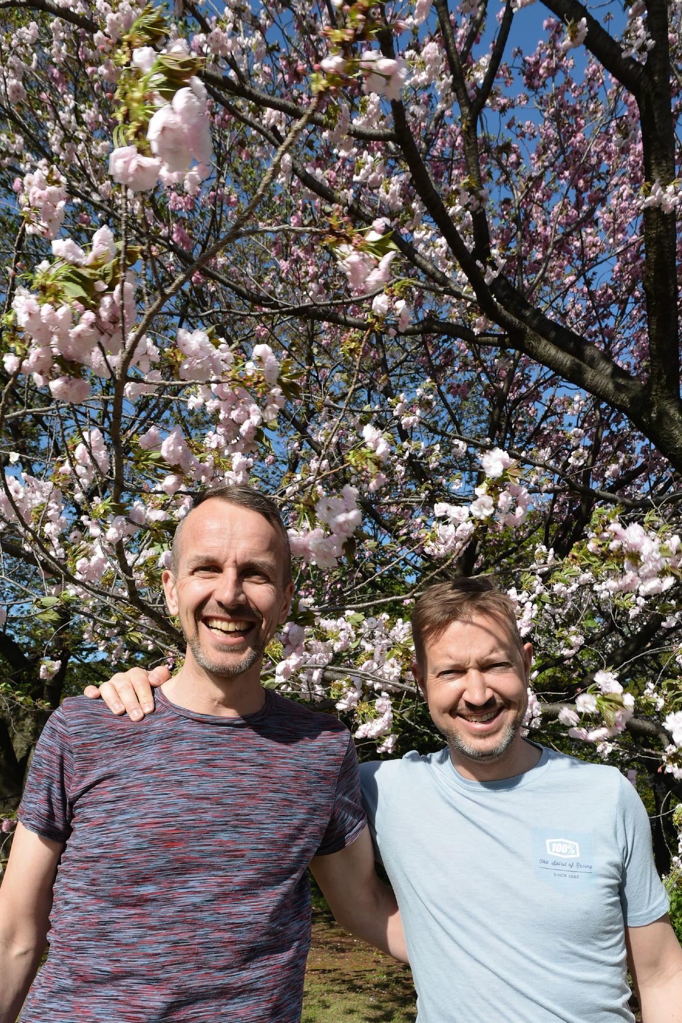 2017-04-19 15-22-07 Cherry Blossom
